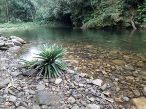 Baixada Santista conta com curso de especialização em Gestão de Recursos Hídricos